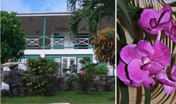 Caribbean gingerbread style house - Scarborough, Tobago | Love Home ...